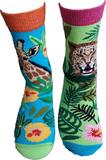 safari mismatch sokken