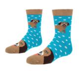 Beagle sokkken - honden sokken