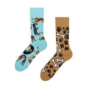 teckel sokken