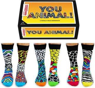 lucky day socks