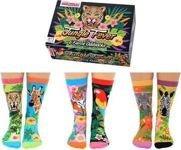 Box Jungle fever